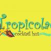 Tropicolada Cocktail Hut